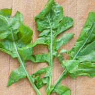 3 Arugula leaves on a cutting board