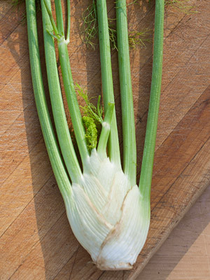 Fennel Bulb on a cutting board