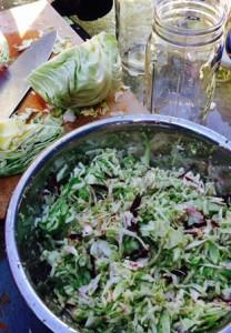 Sauerkraut Blog 2